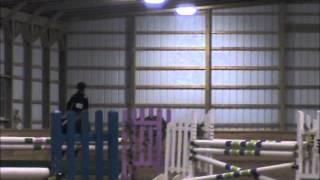 Fox Crossing jumper class-blue ribbon