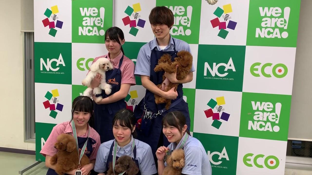 名古屋 eco 動物 海洋 専門 学校
