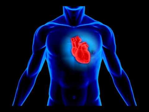 Как нормализовать работу сердца