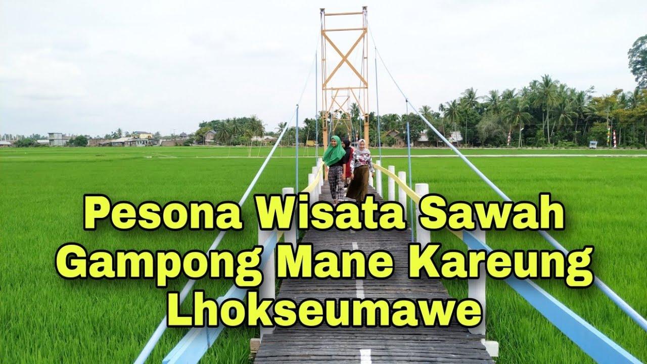 Pesona Wisata Sawah Mane Kareung   Lhokseumawe   YouTube