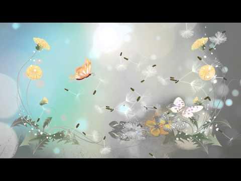 Video Background 27 Butterfly Video Loop Doovi