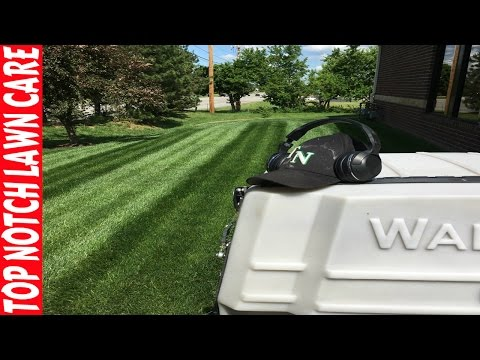 Lawn Care Business Struggles, Looking for Employees, Still Raining, Vlog #122