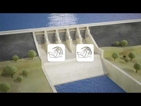 Seqwater explains: Operating Somerset and Wivenhoe dams for water supply and flood mitigation