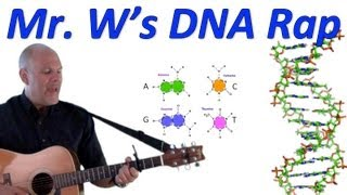 DNA, Fantastic! Mr. W