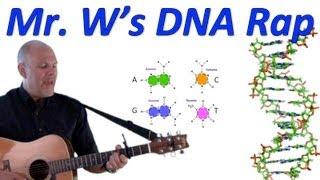 DNA, Fantastic! Mr. W's DNA Rap