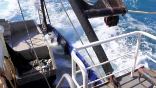 gone prawning the Gulf of Carpenteria