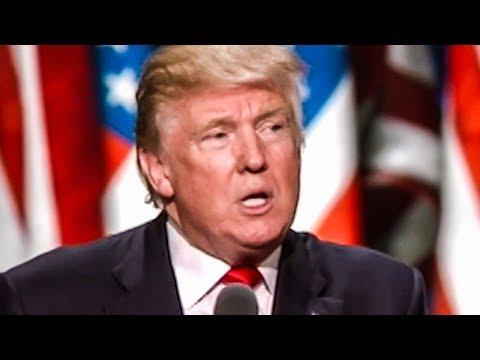 Trump Gets Distracted By Houseflies During Intelligence Briefings