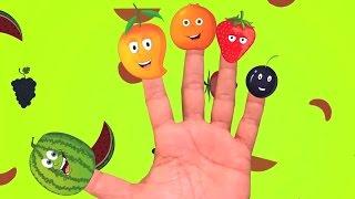 семья палец потешки | рифмы на русском языке для детей | детский сад песни