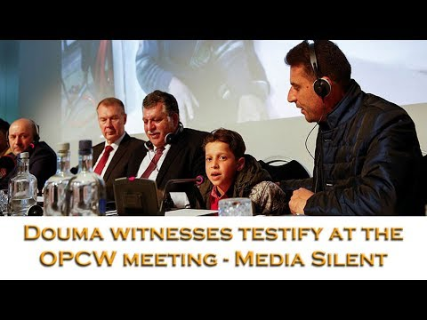 """6 Douma witnesses testify at the Hague there was no """"gas attack"""" - TV media silent"""