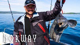 Рибалка в Норвегії (ч. 2) | Справжній відпочинок для мужика | Зубатка в клярі на воці.