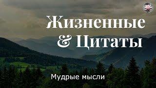 Мудрые Цитаты! Высказывания про Жизнь!
