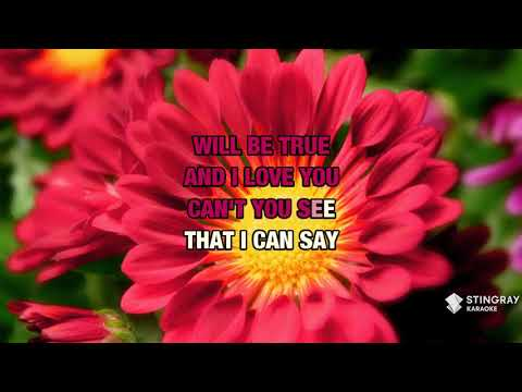 Honestly in the style of Stryper | Karaoke with Lyrics