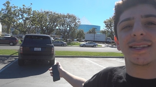 daily vlogs