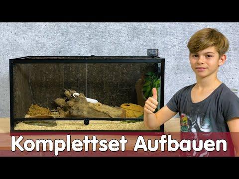 Terrarium Komplettset Aufbauen Melinos Erste Schlange Reptil Tv Youtube