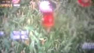Shinchan Bungle In The Jungle Hindi Theme Song HD