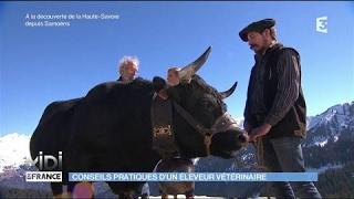 Conseils pratiques d'un éleveur vétérinaire