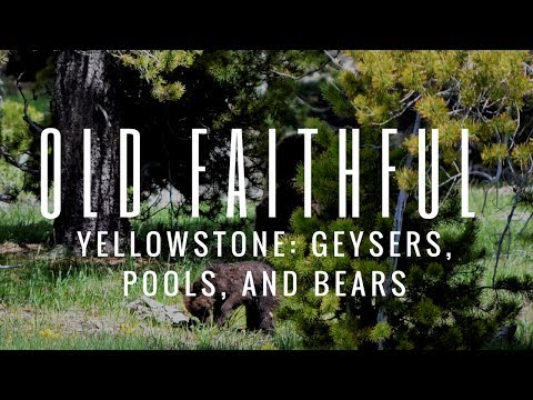 RV Travel Life | Old Faithful, Yellowstone: Geysers, Pools, and Bears