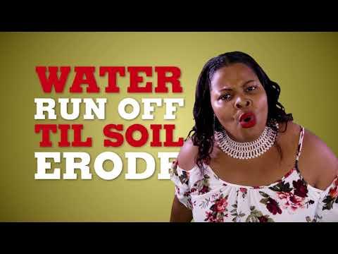 Lucian Calypsonians ACT NOW Saint Lucia Music Video