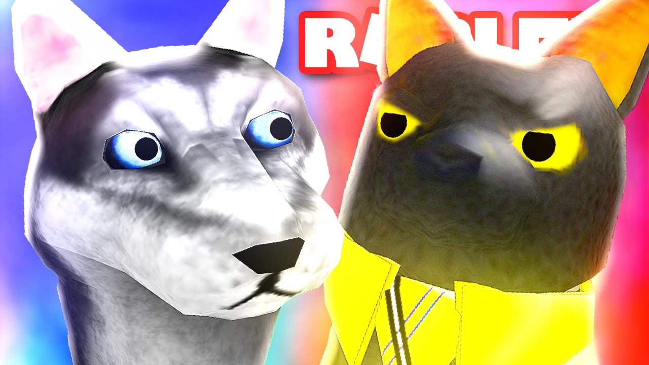 Sir Meows A Lot's Getting Replaced? :( - YouTube