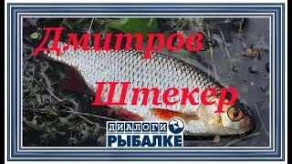 Диалоги о рыбалке - 043 / Дмитров, Штекер