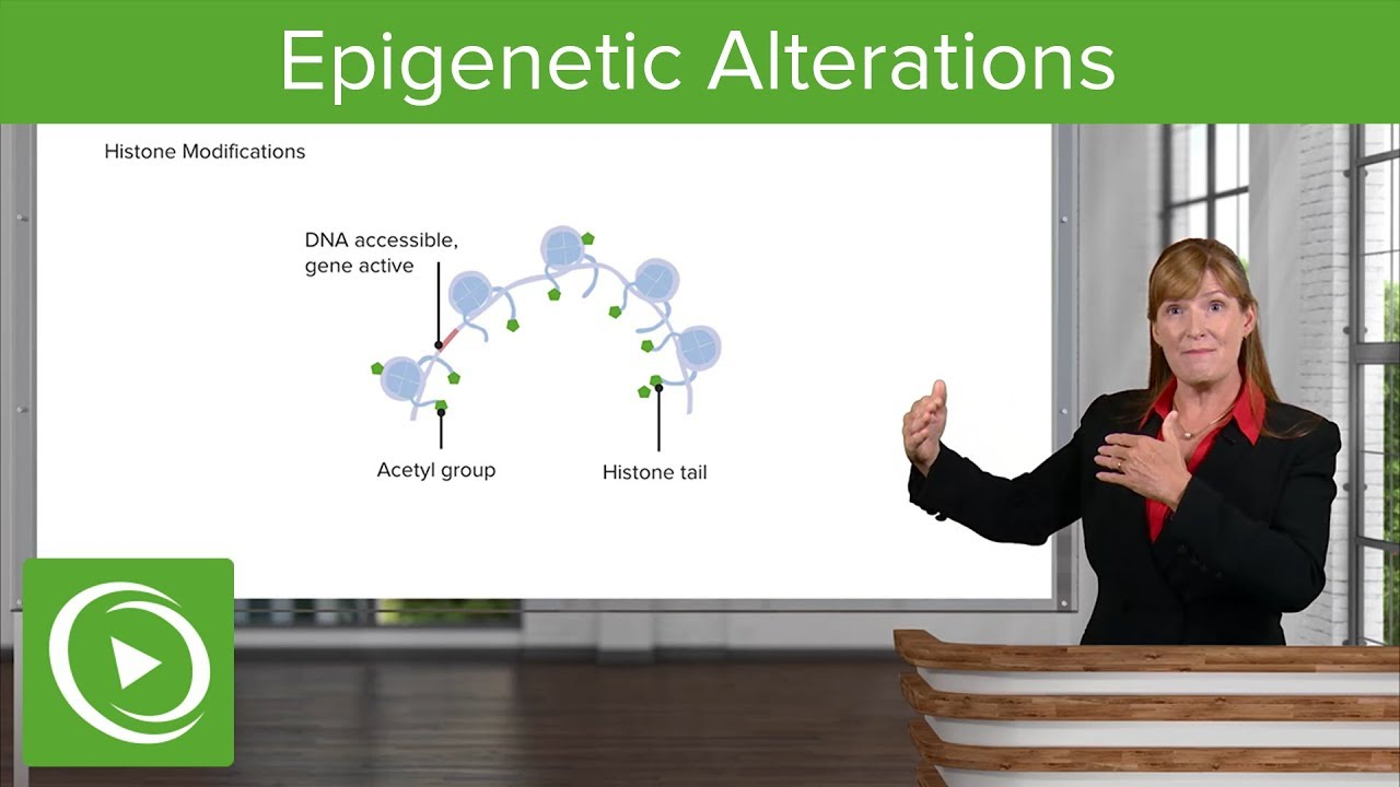 Epigenetic Alterations & Loss of Proteostasis –Aging | Lecturio