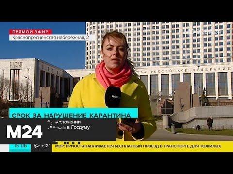 Нарушителям карантина могут грозить миллионные штрафы и тюремный срок - Москва 24
