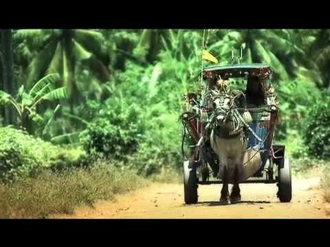 Visit Lombok-Sumbawa 2012 Video