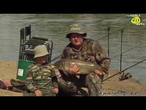 лучшие места для ловли сазана на ахтубе