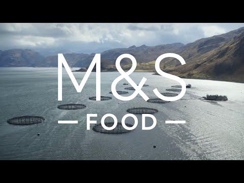 100% Scottish Salmon   Episode 1   Fresh Market Update   M&S FOOD