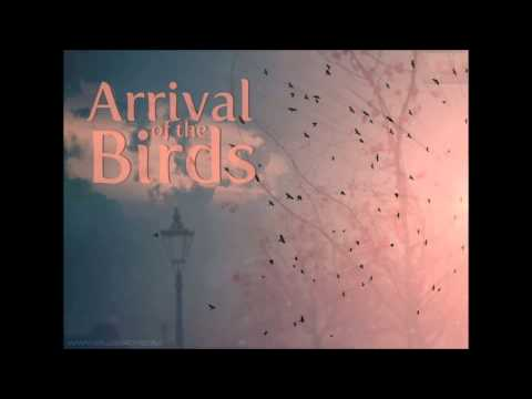 Arrival of the birds nouvelle version
