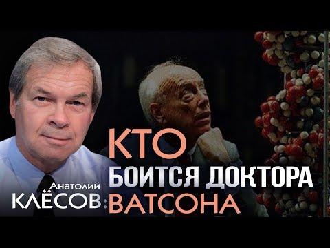 Анатолий Клёсов. Запрещённая наука: разоблачение современных мифов о человеке