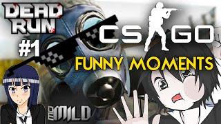 dx cs go 1 ว งด ค บรอล ย dead run funny moments ft momild whitehunte