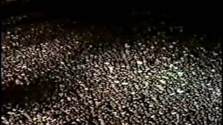 IRON MAIDEN - Sanctuary [Live @ Rock in Rio 1985] Resimi