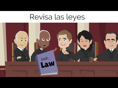 ¿Qué hace la rama judicial? What does the judicial branch do?