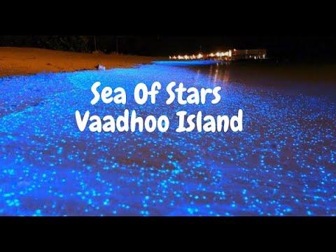 0 - Sea Of Stars Vaadhoo Island, Maldives