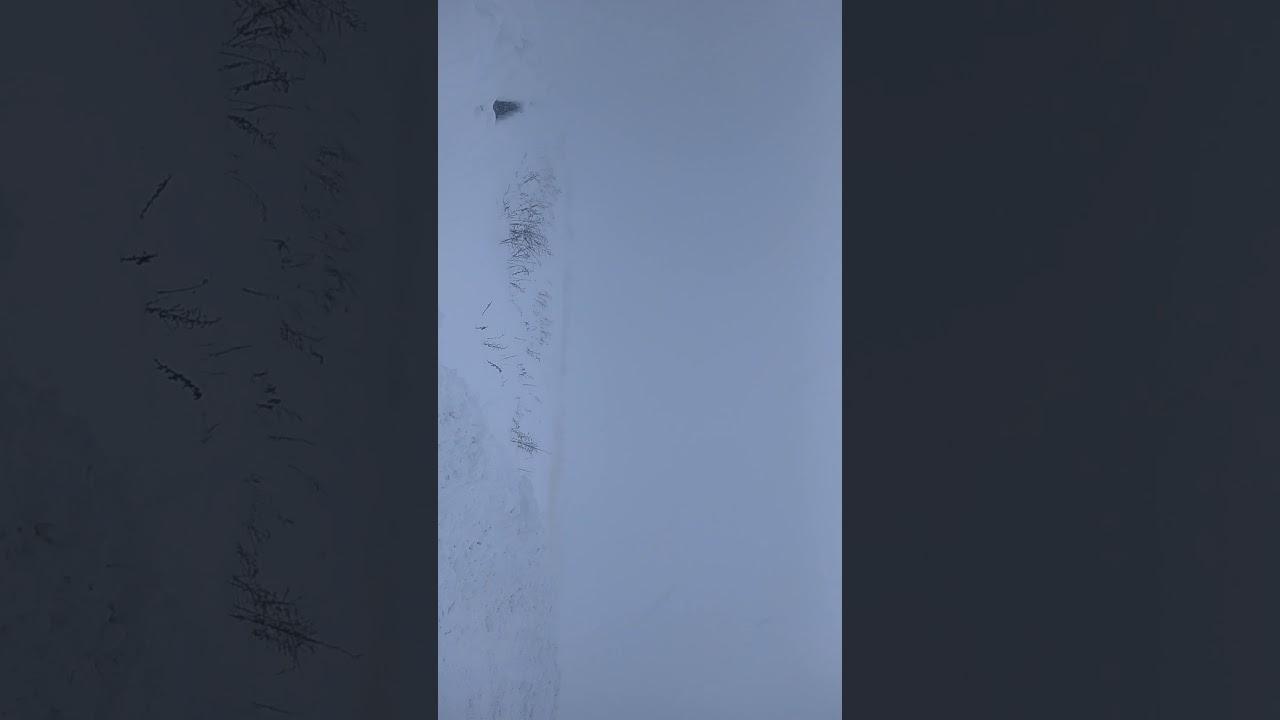 津軽 吹雪 2020年2月9日