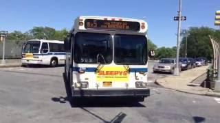 MTA New York City Bus/Westchester County Bee-Line Bus: Bus Action @ Pelham Bay Park