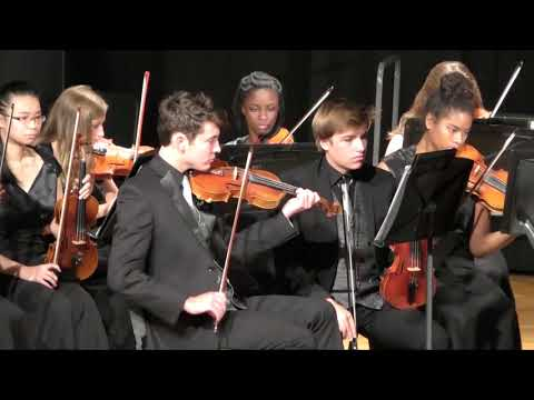 The Emerald Falcon   Chamber Orchestra