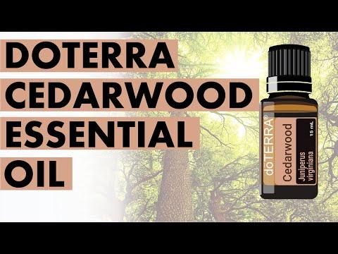 cedarwood-essential-oil:-marvelous-benefits-and-uses