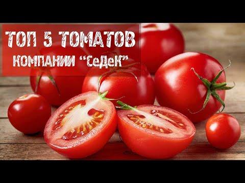 Топ 5 томатов компании \'\'СеДеК\'\'