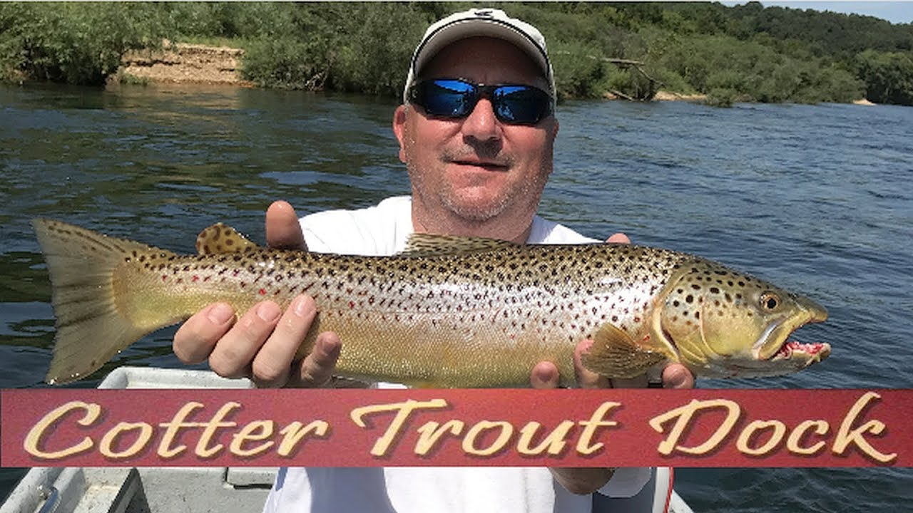 Arkansas white river trout fishing report august 23 2017 for Ar fishing report