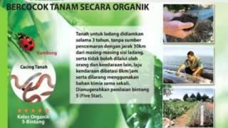 Presentasi AgenDistributor Melilea Pontianak, Kalimantan Barat, Indonesia