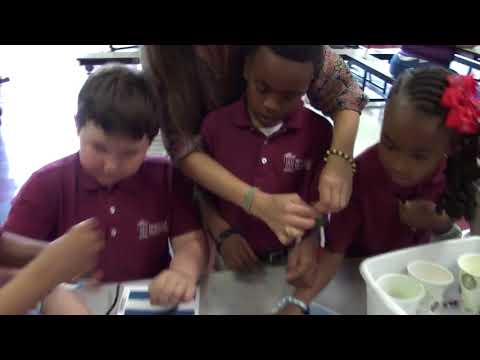 2017 Multicultural Market Day at Nashville Classical Charter School