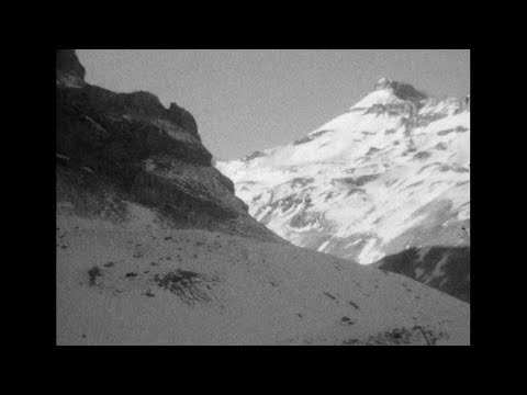 SEABUCKTHORN - Disentangled (Official Music Video)