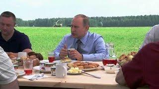 видео Сельское хозяйство России.Вредители яблони и груши и борьба с ними