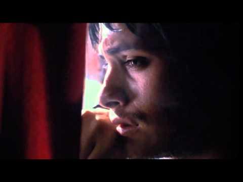 Amores Perros (HD Trailer)