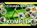 Wow Ini 15 Suara Master Komplit Cocok Untuk Kompetisi Burung Berkicau Sasangps Ngeban(.mp3 .mp4) Mp3 - Mp4 Download