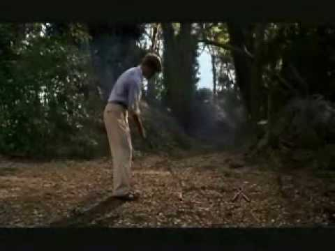 "Will Smith ,Bagger Vance ,Tiger Woods ""SWING"" Golf"