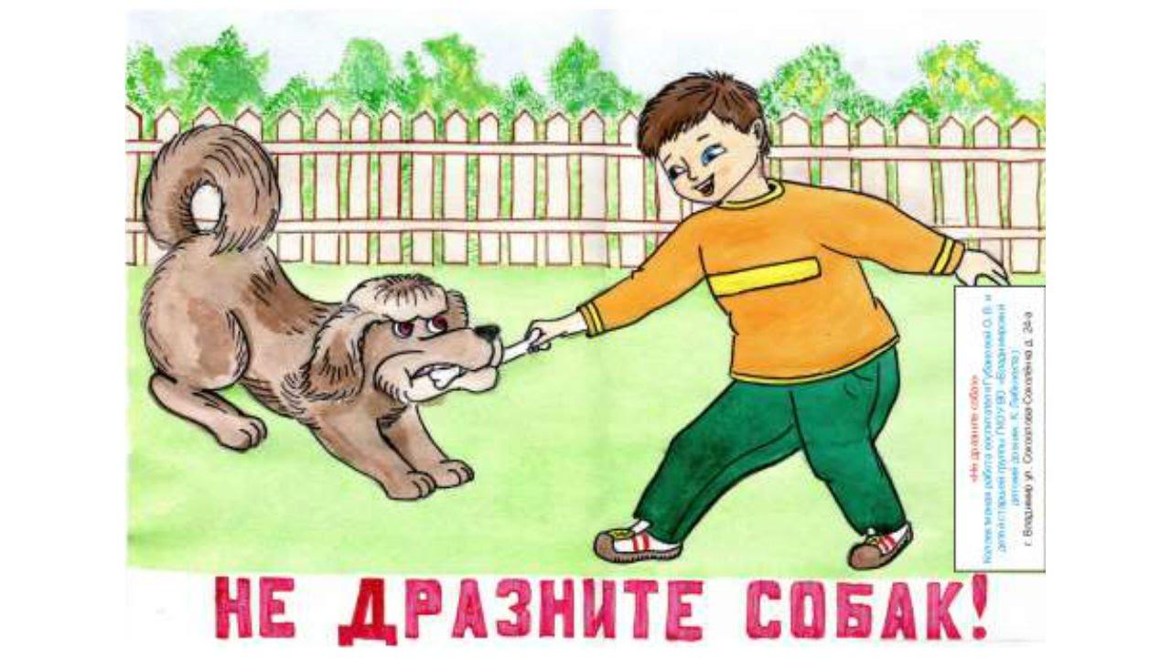 картинка не дразните животных службе мвд