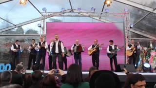 Festa das Camélias Celorico de Basto - Amigos das Tainadas
